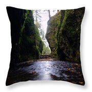 Walking In The Gorge Throw Pillow