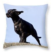 Walking Into The Wind Throw Pillow
