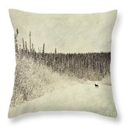 Walking Luna Throw Pillow