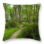 Walking My Art Throw Pillow