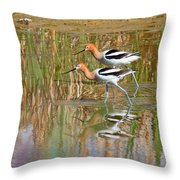 Walking My Baby Back Home Throw Pillow
