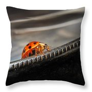 Walking On Edge Throw Pillow