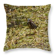 Walking On The Reeds Throw Pillow
