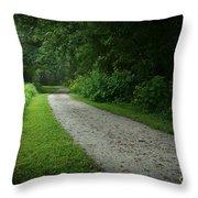 Walking Path Throw Pillow