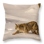 Walking Softly Throw Pillow