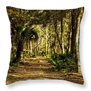 Walking The Bluff Artistic Throw Pillow