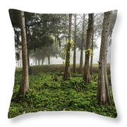 Walking The Dog In Pioneer Park Throw Pillow