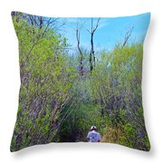 Walking The Ox Bow Throw Pillow