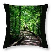 Walking The Path  Throw Pillow