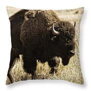 Walking The Trail Throw Pillow