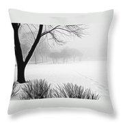 Walking Through A Winter Wonderland Throw Pillow