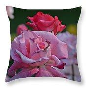 Walking Through The Rose Garden Throw Pillow