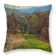 Walking Through The Woods In Spring Throw Pillow