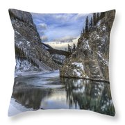 Walking Through Wonderland Throw Pillow