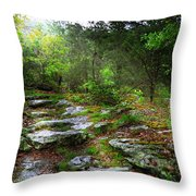 Walking With Light Throw Pillow