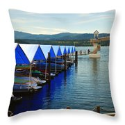 Walkway 6742 Throw Pillow