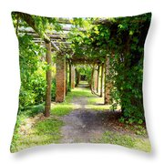 Walkway Throw Pillow by Carey Chen