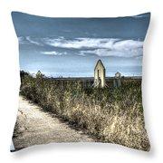 Walkway In The Marsh 2 Throw Pillow
