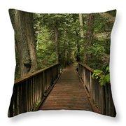 Walkway Into Paradise Throw Pillow