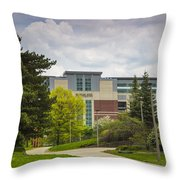 Walkway To Spartan Stadium Throw Pillow