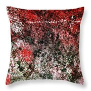 Wall Abstract 38 Throw Pillow