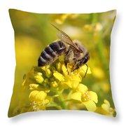Wall Flower Pollen Throw Pillow