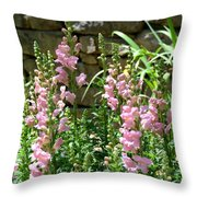 Wall Of Snapdragons Throw Pillow