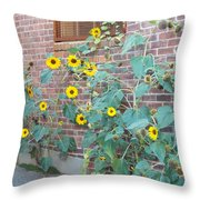 Wall Of Sunflowers 1 Throw Pillow