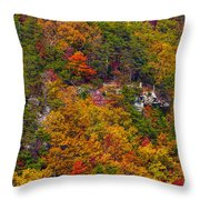 Wall Of Trees Throw Pillow