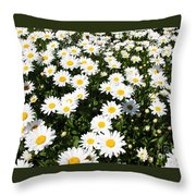Wall To Wall Daisies Throw Pillow