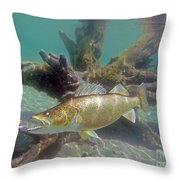 Walleye And Dardevle Throw Pillow