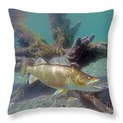 Walleye Pike And Dardevle Throw Pillow