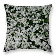 Wallflowers 2  Throw Pillow