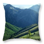 1m5903-wallowa Mountains And Valley Of The East Fork Throw Pillow
