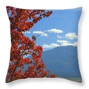 Dn5930-wallowa Valley In Fall Throw Pillow