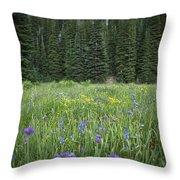 Wallowa Wildflowers Throw Pillow
