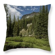 Wallowas - No. 1 Throw Pillow