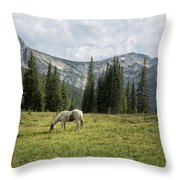 Wallowas - No. 2 Throw Pillow
