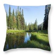 Wallowas - No. 3 Throw Pillow