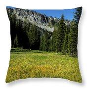 Wallowas - No. 4 Throw Pillow