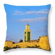 Walls Of Meknes In Morocco Throw Pillow