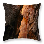 Wallstreet - The Narrows In Zion National Park. Throw Pillow