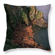 Walrus Haul-out, Alaska Throw Pillow