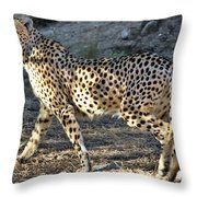 Wandering Cheetah Throw Pillow