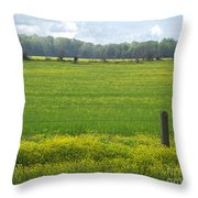 Wandering Hwy 51 Mississippi Throw Pillow