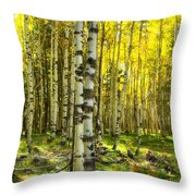 Wandering In The Woods  Throw Pillow