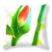 Wandering Rose Garden Throw Pillow