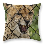 Wanting Freedom Throw Pillow