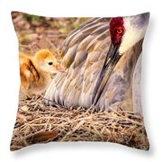 Wants Attention Throw Pillow