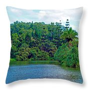 Waoleke Pond Forest Throw Pillow